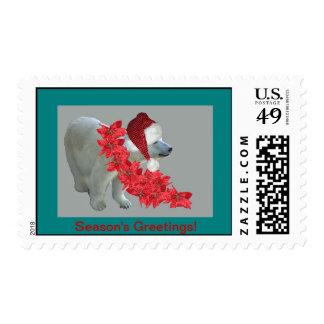 Season's Greetings Polar Bear Santa Postage Stamp