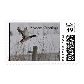 Seasons Greetings Postage