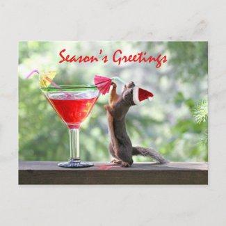 Season's Greetings Squirrel Post Card