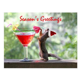 Season's Greetings Squirrel Postcard