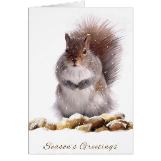 Season's Greetings Squirrel With Winter Nut Store Greeting Card