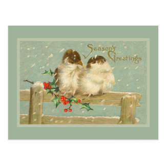Season's Greetings Two Birds on a Fence Postcard