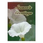 Season's Greetings - White Bindweed Greeting Card