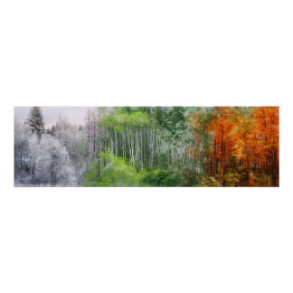 Seasons Of The Aspen Art Mural Poster