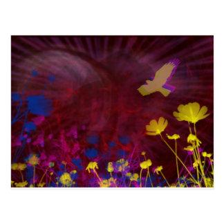 Seasons Psychedelic Summer Postcard