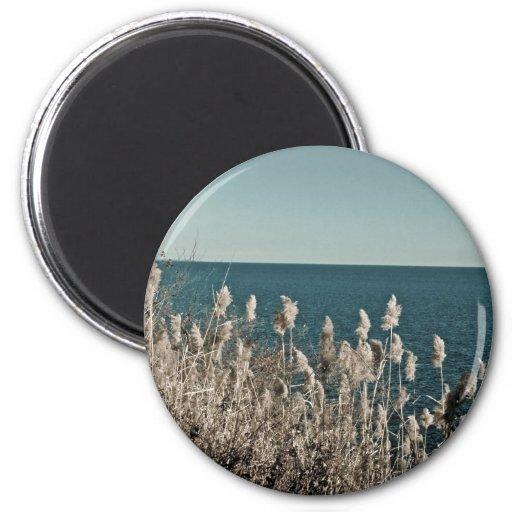 seasons:  water series [spring] magnet