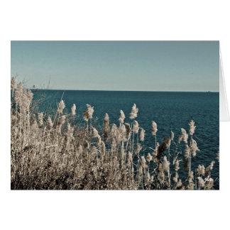 seasons:  water series [spring] notecard
