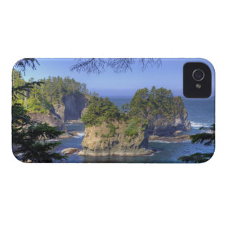 Seastacks, Makah Nation Tribal Lands, Cape iPhone 4 Cover