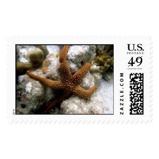 Seastar Postage