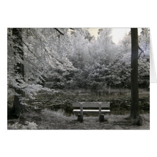 Seat on a lake, infrared photography card