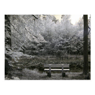 Seat on a lake, infrared photography postcard