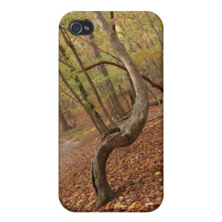 seat tree case for iPhone 4