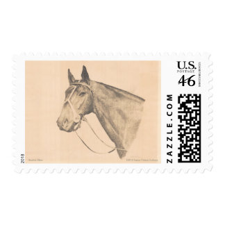 Seattle Slew by Susan Pelisek Kolberg Stamp