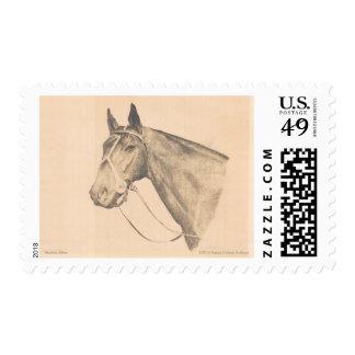 Seattle Slew by Susan Pelisek Kolberg Stamp
