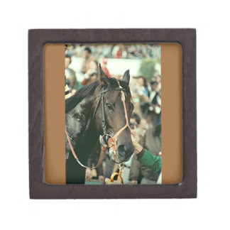 Seattle Slew Thoroughbred 1978 Gift Box