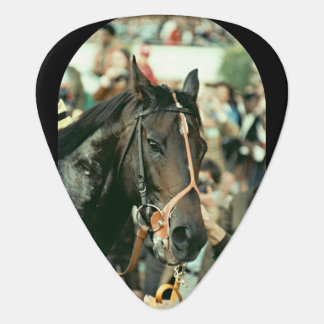 Seattle Slew Thoroughbred 1978 Guitar Pick