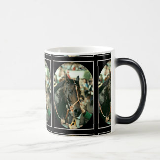 Seattle Slew Thoroughbred 1978 Magic Mug