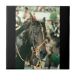 Seattle Slew Thoroughbred 1978 Small Square Tile