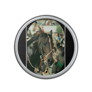 Seattle Slew Thoroughbred 1978 Speaker