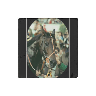 Seattle Slew Thoroughbred 1978 Stone Magnet
