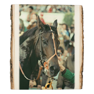 Seattle Slew Thoroughbred 1978 Wood Panel