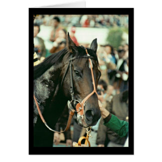 Seattle Slew Thoroughbred Racehorse 1978 Greeting Card