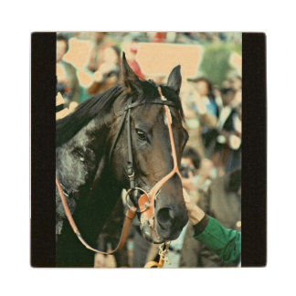 Seattle Slew Thoroughbred Racehorse 1978 Wood Coaster
