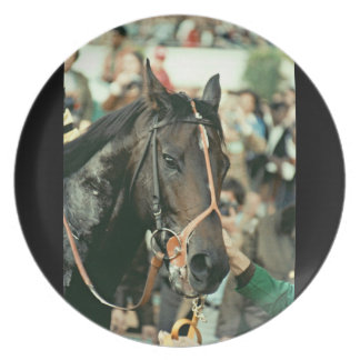 Seattle Slew Thoroughbred Racehorse 1978 Plates