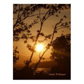 Seattle Sunset Postcard