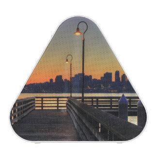 Seattle Washington Downtown Skyline Speaker