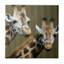 Seattle, Washington. Two giraffes Ceramic Tile