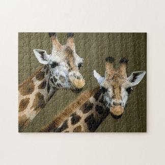 Seattle, Washington. Two giraffes Jigsaw Puzzle