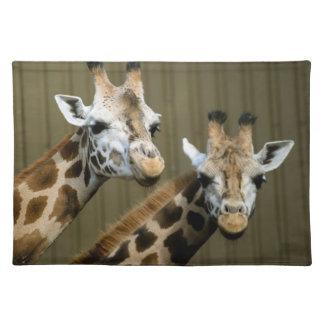 Seattle, Washington. Two giraffes Placemat