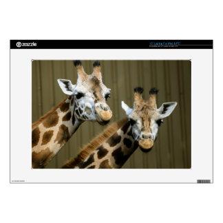 "Seattle, Washington. Two giraffes Skin For 15"" Laptop"