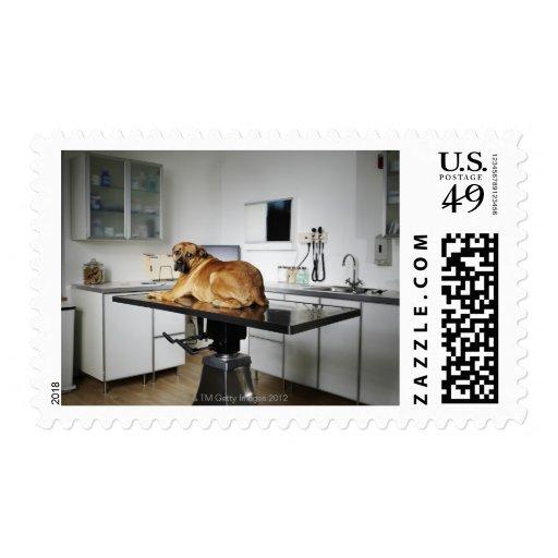 Seattle, Washington, USA 2 Stamps
