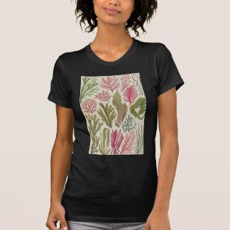Seaweed Family Shirt