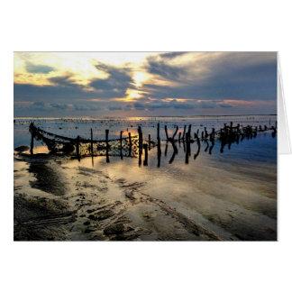 Seaweed Farms at Pulau Rote Card