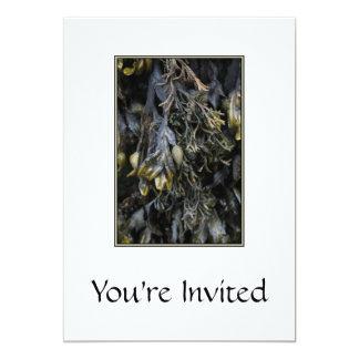 """Seaweed. 5"""" X 7"""" Invitation Card"""