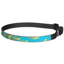 Seaweed on aqua pet collar