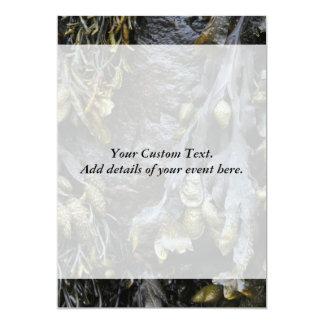 "Seaweed Picture. 5"" X 7"" Invitation Card"