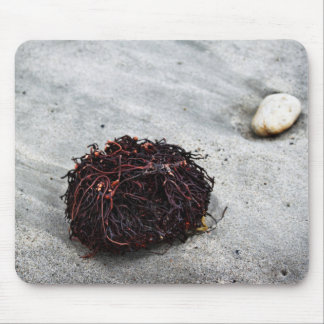 Seaweed Roots Mouse Pad