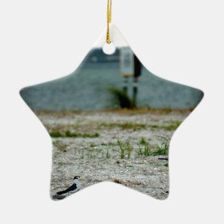 Sebastian Inlet Sanctuary Ceramic Ornament
