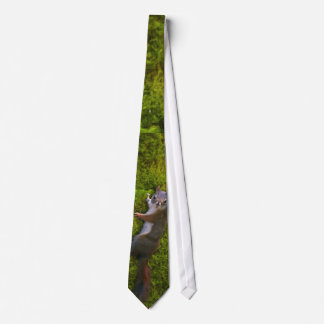 SEBASTIAN SQUIRREL Neck Tie