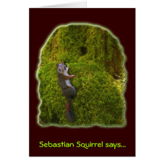 SEBASTIAN SQUIRREL Note Cards