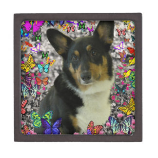 Sebastian the Welsh Corgi in Butterflies Keepsake Box