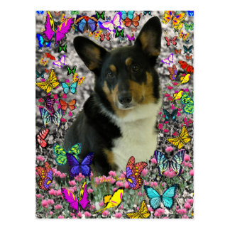 Sebastian the Welsh Corgi in Butterflies Postcard