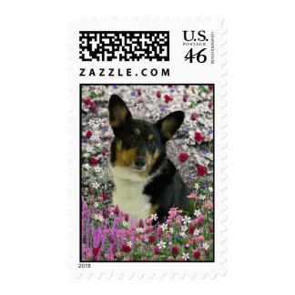 Sebastian the Welsh Corgi in Flowers Postage Stamps