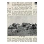 Sebastopol, California Postcard