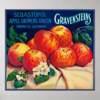 Sebastopol Gravensteins Apple LabelSonoma, CA Impresiones