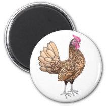 Sebright Bantam Rooster Round Magnet